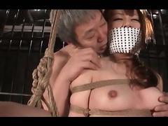 curvy jap